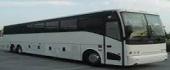 Bus Vehicle Name1